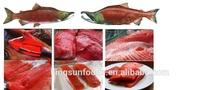 wholesale Frozen Sockeye Salmon