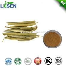 Olive Leaf Extract Oleuropein Hydroxytyrosol powder