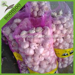 chinese garlic wholesale price
