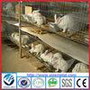 Hot sale european style easy installation folding metal Rabbit cages / rabbit breeding cages (skype:yizemetal3)