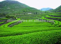 IMO Organic certified Jiangxi Imperial Chunmee Green Tea