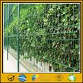 De haute qualité en acierinoxydable treillis de jardin( price+china usine gros)