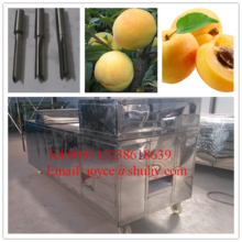 best quality 304 ss fruit seed remover machine / 2015 new multifunctional cherry pit remove machine