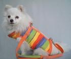 Wholesale Portable pet carrier lovable pet products bags