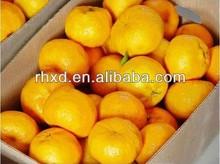2013 New Crop Honey Mandarin Orange (lugan) /name Mandarin