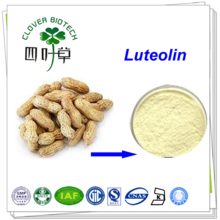 98% high quality Luteolin peanut shell extract powder