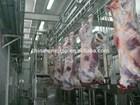 lamb and Ovine slaughter house machine line