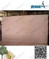 caliente la venta mejor precio okoume madera de madera contrachapada con núcleo del álamo