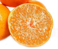 New Crop Fresh Fruit Name All Citrus Fruits/mandarin Oranger