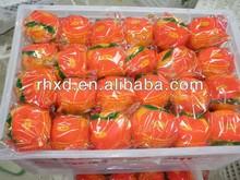 2014 Good Citrus Fruit Product Type Fresh Mandarin Orange