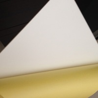 0.8mm self-adhesive rigid PET film top pvc sheet for album.