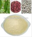 La fábrica del gmp suministro mejor populares de alta calidad de haba de riñón blanca p. E. 10:1