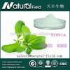 OEM Welcome NF supply natural stevia sweetener