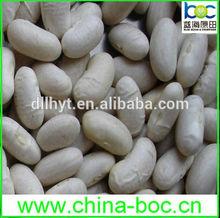 2014 organic white big beans for America market