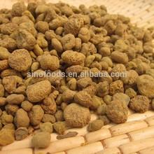 yan hua suo dry fruits medicine CORYDALIS hu jiang plastic