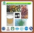 Saw palmetto berry extracto en polvo 25% de ácidos grasos