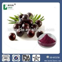 acai berry powder bulk acai berry extract 20:1 anthocyanosides acai extrait make dietary supplements and cosmetics