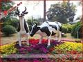 Decoração ao ar livre resina vaca tamanho vida/comércio garantia