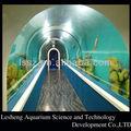 virgen del acuario de acrílico túneles