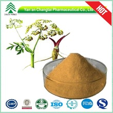 GMP 100% natural HPLC Angelica root extract natural Ligustilide