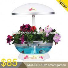 power plant hydroponics