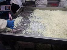 frozen fresh onion