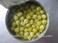 frescas a granel en lata guisantes verdes