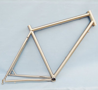 Titanium tourer frame with IS51 brake and eyelets for fenders/panniers and also repaceable dropouts