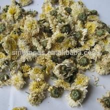 dried white chrysanthemum flower chrysanthemum tea benefits