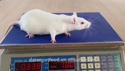 Grade A whole frozen rat for pet food