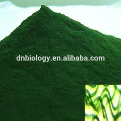 Pure natural organic EU and JAS 100% natural top quality spirulina powder Organic SpirulinaOrganic Spirulina powder 100% Natural