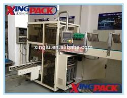 Bottle Carton Packing Machine (Bottles into Carton)