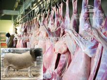 High Quality Halal Goat Ram Lamb Sheep Slaughter Plant