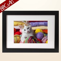 Lovely cat decor wall hanging photo painting