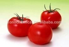 pure lycopene powder free sample natural herb extracts food grade additive lycopene tomato powder