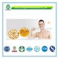 Gmp certificat populaire secs à base de plantes graines de citrouille