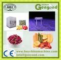 食品凍結乾燥機/の凍結は、 バラの花びら/凍結乾燥ローヤルゼリー粉末マシン