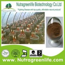 factory supply best price ganoderma lucidum capsules