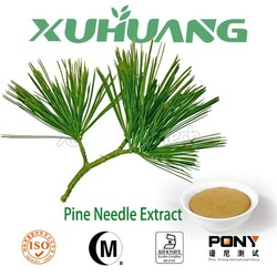 2015 Factory Supply 100% Natural Pine Needle Extract/Pine needle P.E.
