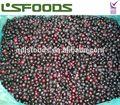 nuevo 2015 grosellero negro congelado de frutas
