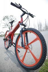 Flash, Selfdesign pedelec e cycle electric bike chopper