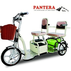 PT-EP Fashion Design Passenger Use Chinese Hot Style Electric Adult Tricycle