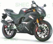Motorcycle 110cc metal art motorcycle