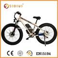 s19 elétrico da bicicleta de montanha