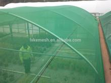 Green Shade Net/sun shade netting