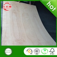 White poplar lumber plywood / plywood with cheapest price