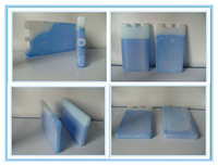 Hot Selling Rigid hdpe Thermal Cold Pack Hard Shell Ice Pack Freezer Gel Cold Accumulation Box