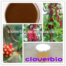 Schizandrae chinese fruit extract Schizandra berry powder