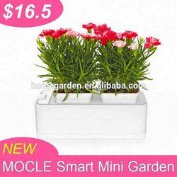 garden flower planter