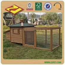 Cage pigeon DXH022